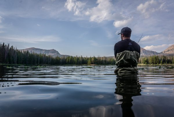 Wading into Decisions